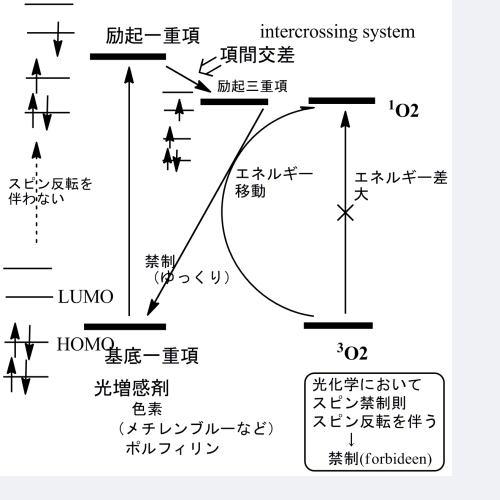 項間交差 - Intersystem crossing